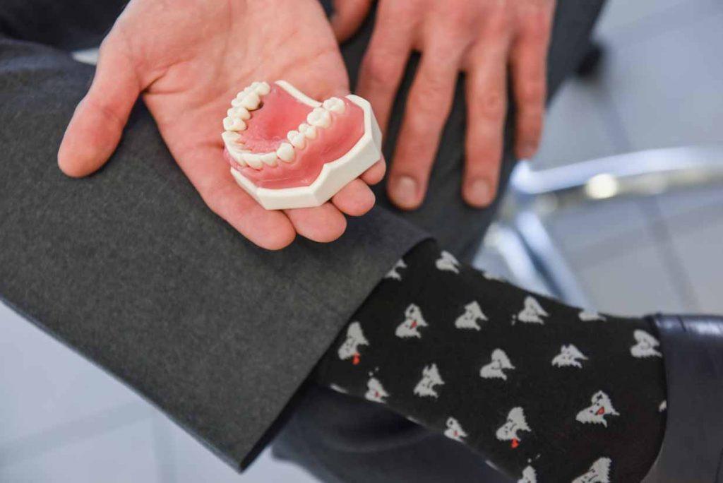 Tooth Model & Teeth Socks   West Calgary Periodontics